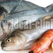 روش تشخیص ماهی و میگو تازه