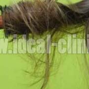 چگونه موهایی سالم داشته باشیم