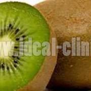 خواص و منابع ویتامین ث در بدن